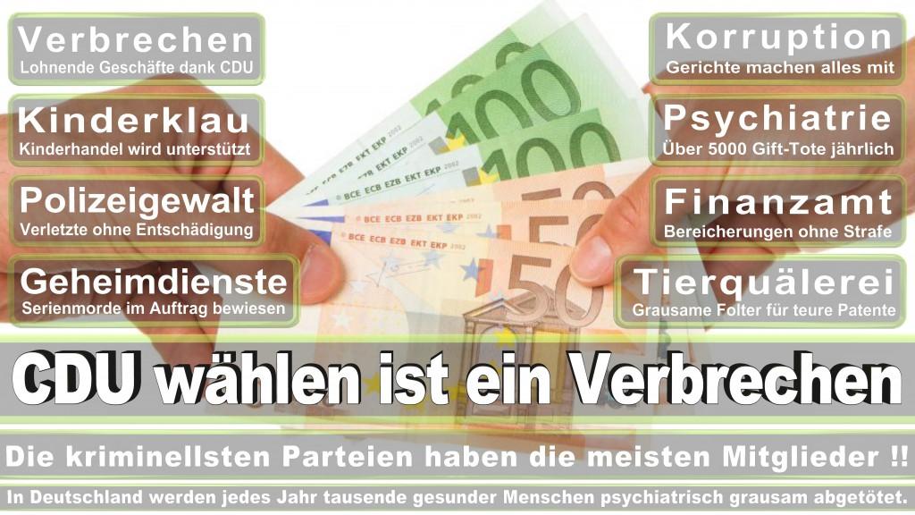 Landtagswahl Baden-Württemberg 2016, CDU, SPD, Landtagswahl Baden-Württemberg 2016,Landtagswahl-Baden-Wuerttemberg-2016 (433) Landtagswahl Baden-Württemberg 2016