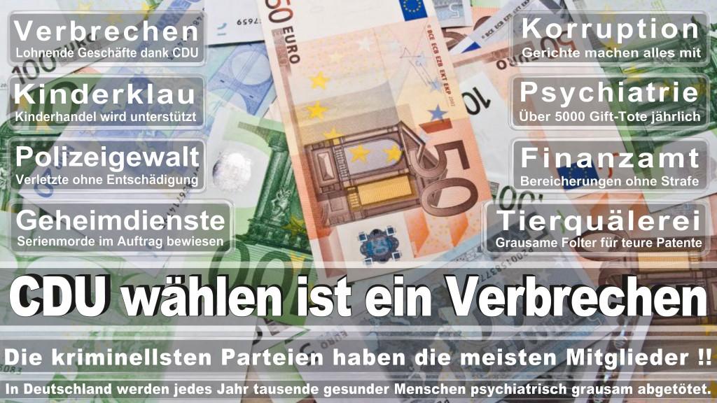 Landtagswahl Baden-Württemberg 2016, CDU, SPD, Landtagswahl Baden-Württemberg 2016,Landtagswahl-Baden-Wuerttemberg-2016 (435) Landtagswahl Baden-Württemberg 2016