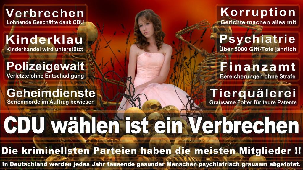 Landtagswahl Baden-Württemberg 2016, CDU, SPD, Landtagswahl Baden-Württemberg 2016,Landtagswahl-Baden-Wuerttemberg-2016 (437) Landtagswahl Baden-Württemberg 2016