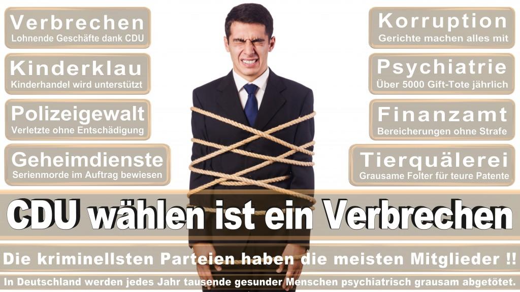 Landtagswahl Baden-Württemberg 2016, CDU, SPD, Landtagswahl Baden-Württemberg 2016,Landtagswahl-Baden-Wuerttemberg-2016 (439) Landtagswahl Baden-Württemberg 2016