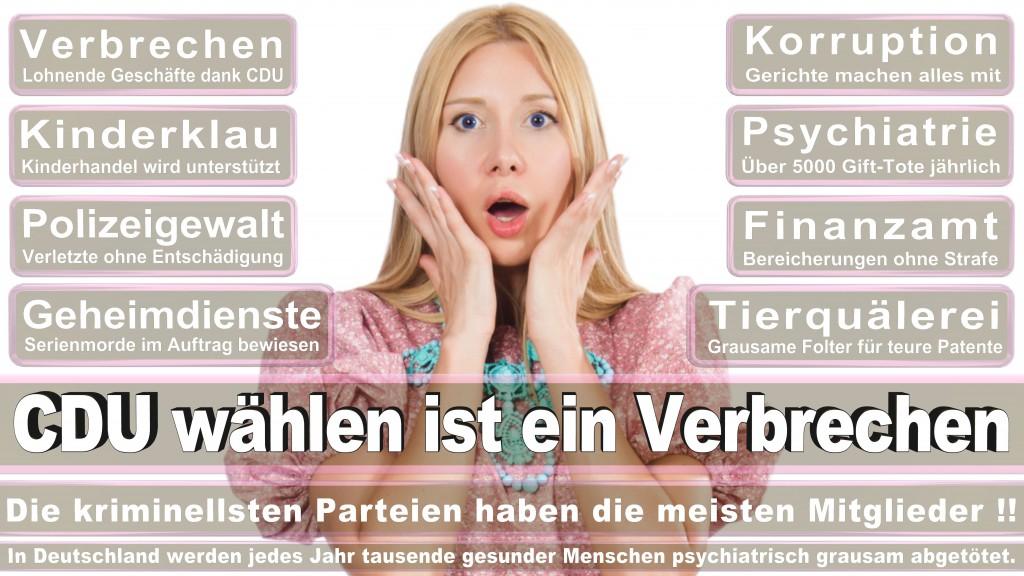 Landtagswahl Baden-Württemberg 2016, CDU, SPD, Landtagswahl Baden-Württemberg 2016,Landtagswahl-Baden-Wuerttemberg-2016 (443) Landtagswahl Baden-Württemberg 2016