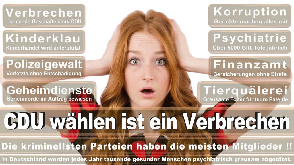 Landtagswahl Baden-Württemberg 2016, CDU, SPD, Landtagswahl Baden-Württemberg 2016,Landtagswahl-Baden-Wuerttemberg-2016 (445) Landtagswahl Baden-Württemberg 2016