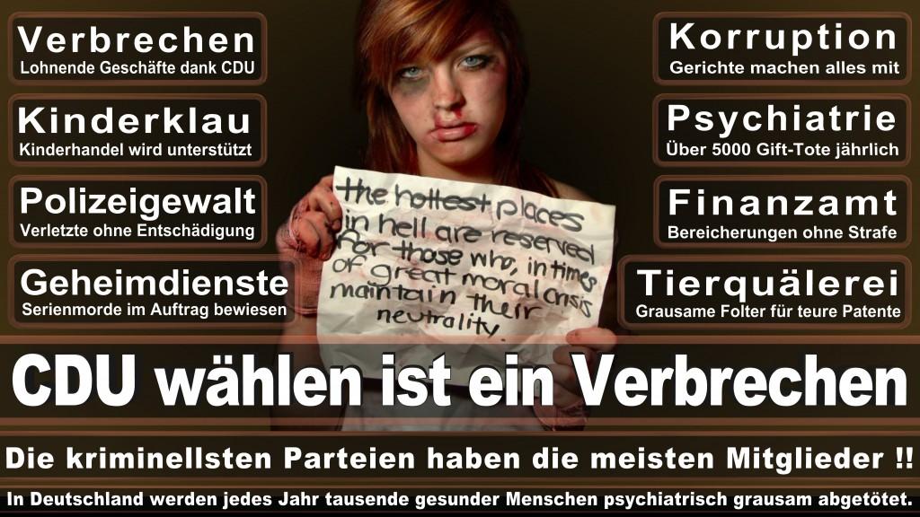 Landtagswahl Baden-Württemberg 2016, CDU, SPD, Landtagswahl Baden-Württemberg 2016,Landtagswahl-Baden-Wuerttemberg-2016 (449) Landtagswahl Baden-Württemberg 2016