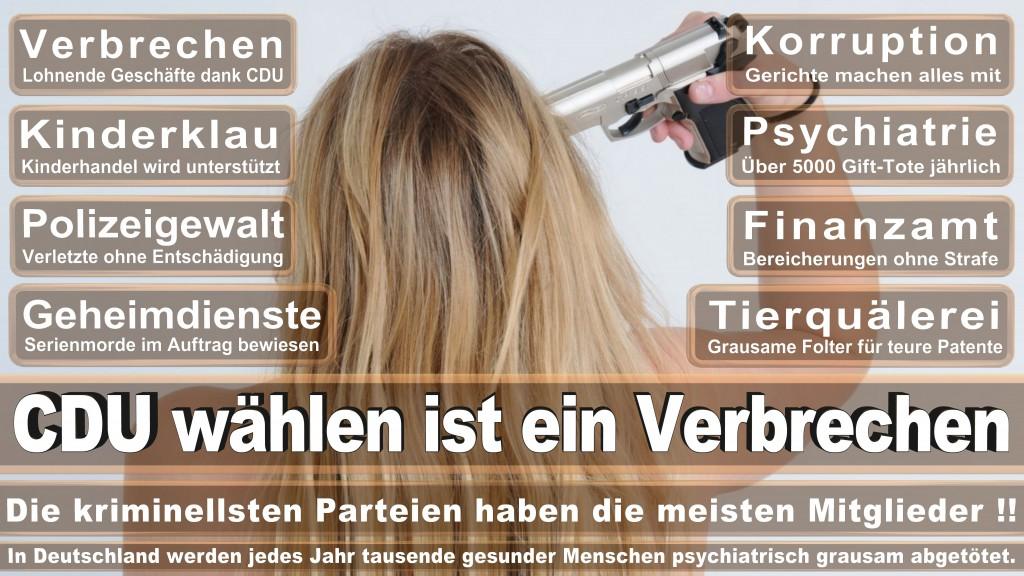 Landtagswahl Baden-Württemberg 2016, CDU, SPD, Landtagswahl Baden-Württemberg 2016,Landtagswahl-Baden-Wuerttemberg-2016 (45) Landtagswahl Baden-Württemberg 2016