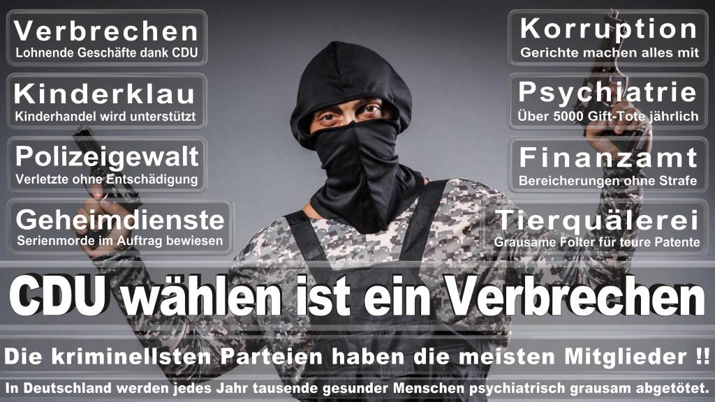 Landtagswahl Baden-Württemberg 2016, CDU, SPD, Landtagswahl Baden-Württemberg 2016,Landtagswahl-Baden-Wuerttemberg-2016 (451) Landtagswahl Baden-Württemberg 2016