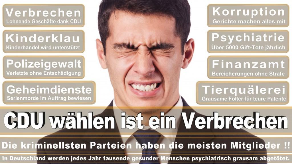 Landtagswahl Baden-Württemberg 2016, CDU, SPD, Landtagswahl Baden-Württemberg 2016,Landtagswahl-Baden-Wuerttemberg-2016 (455) Landtagswahl Baden-Württemberg 2016