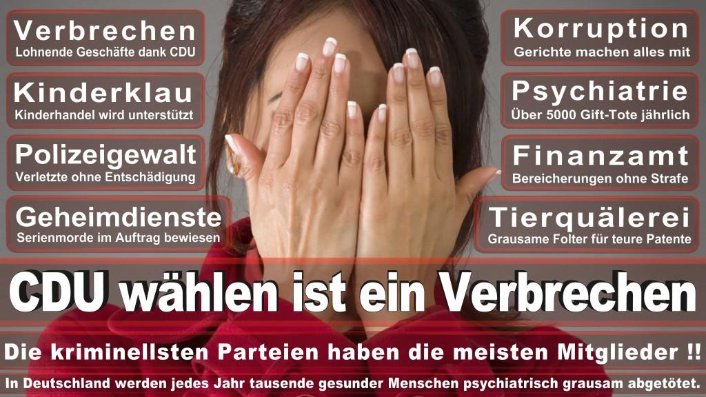 Landtagswahl Baden-Württemberg 2016, CDU, SPD, Landtagswahl Baden-Württemberg 2016,Landtagswahl-Baden-Wuerttemberg-2016 (457) Landtagswahl Baden-Württemberg 2016
