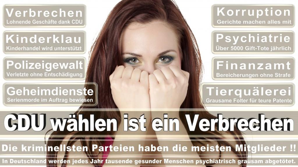 Landtagswahl Baden-Württemberg 2016, CDU, SPD, Landtagswahl Baden-Württemberg 2016,Landtagswahl-Baden-Wuerttemberg-2016 (459) Landtagswahl Baden-Württemberg 2016