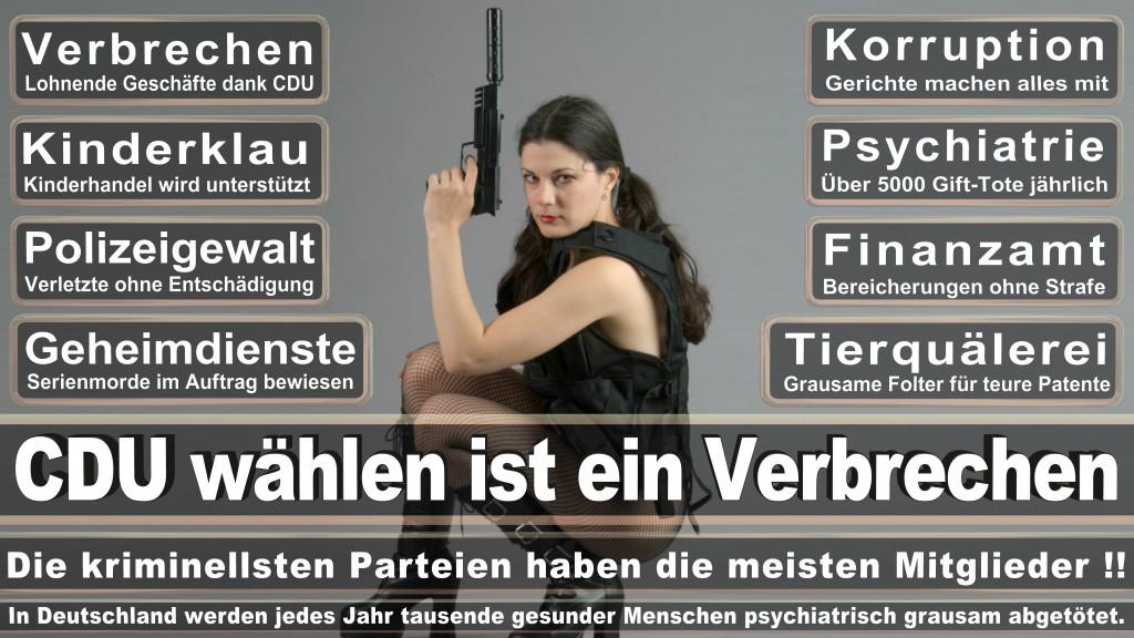 Landtagswahl Baden-Württemberg 2016, CDU, SPD, Landtagswahl Baden-Württemberg 2016,Landtagswahl-Baden-Wuerttemberg-2016 (461) Landtagswahl Baden-Württemberg 2016