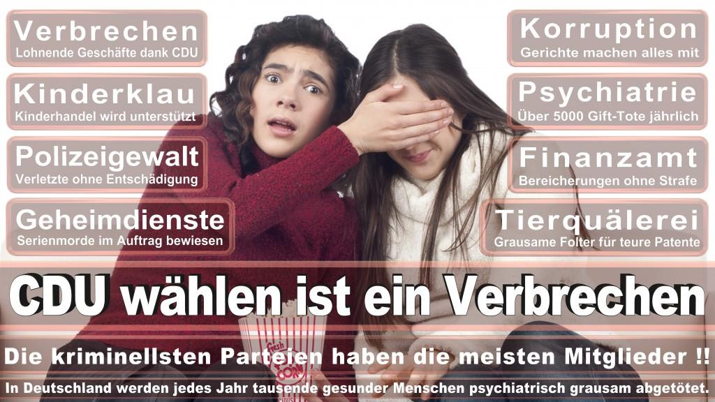 Landtagswahl Baden-Württemberg 2016, CDU, SPD, Landtagswahl Baden-Württemberg 2016,Landtagswahl-Baden-Wuerttemberg-2016 (463) Landtagswahl Baden-Württemberg 2016