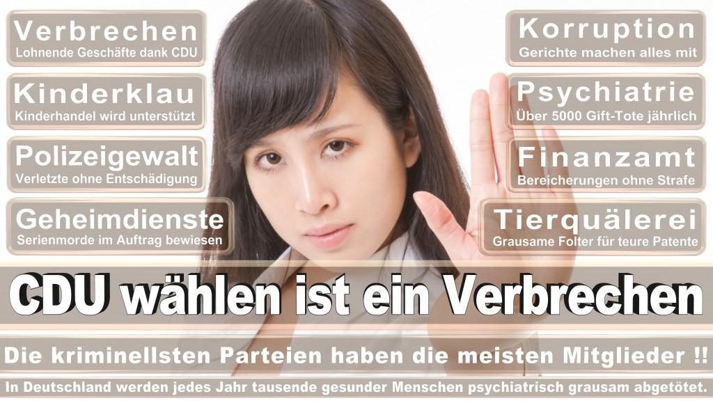 Landtagswahl Baden-Württemberg 2016, CDU, SPD, Landtagswahl Baden-Württemberg 2016,Landtagswahl-Baden-Wuerttemberg-2016 (465) Landtagswahl Baden-Württemberg 2016