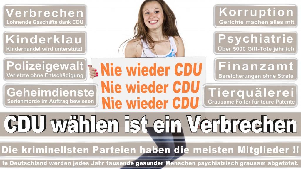 Landtagswahl Baden-Württemberg 2016, CDU, SPD, Landtagswahl Baden-Württemberg 2016,Landtagswahl-Baden-Wuerttemberg-2016 (467) Landtagswahl Baden-Württemberg 2016