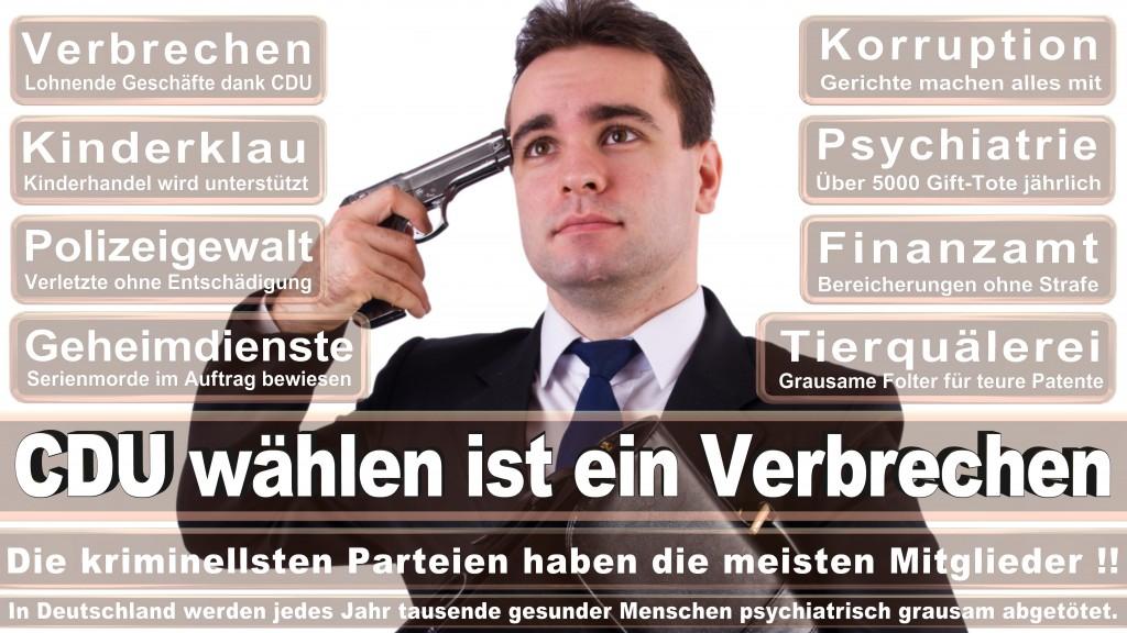 Landtagswahl Baden-Württemberg 2016, CDU, SPD, Landtagswahl Baden-Württemberg 2016,Landtagswahl-Baden-Wuerttemberg-2016 (469) Landtagswahl Baden-Württemberg 2016
