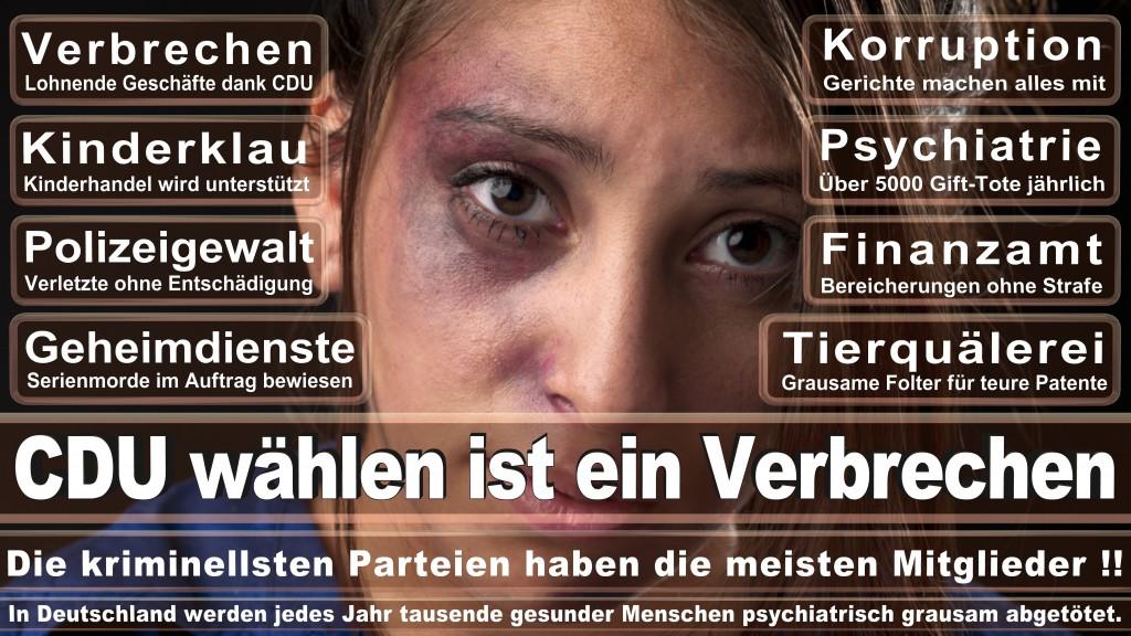 Landtagswahl Baden-Württemberg 2016, CDU, SPD, Landtagswahl Baden-Württemberg 2016,Landtagswahl-Baden-Wuerttemberg-2016 (471) Landtagswahl Baden-Württemberg 2016