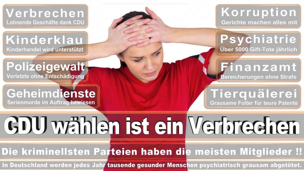 Landtagswahl Baden-Württemberg 2016, CDU, SPD, Landtagswahl Baden-Württemberg 2016,Landtagswahl-Baden-Wuerttemberg-2016 (475) Landtagswahl Baden-Württemberg 2016