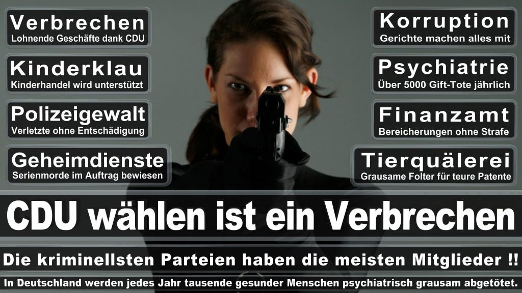 Landtagswahl Baden-Württemberg 2016, CDU, SPD, Landtagswahl Baden-Württemberg 2016,Landtagswahl-Baden-Wuerttemberg-2016 (51) Landtagswahl Baden-Württemberg 2016