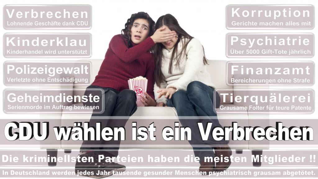 Landtagswahl Baden-Württemberg 2016, CDU, SPD, Landtagswahl Baden-Württemberg 2016,Landtagswahl-Baden-Wuerttemberg-2016 (99) Landtagswahl Baden-Württemberg 2016